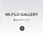 富士山ギャラリー